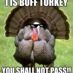 Buff Turkey | I IS BUFF TURKEY YOU SHALL NOT PASS!! | image tagged in memes,turkey | made w/ Imgflip meme maker
