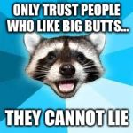 raccoon | ONLY TRUST PEOPLE WHO LIKE BIG BUTTS... THEY CANNOT LIE | image tagged in raccoon | made w/ Imgflip meme maker