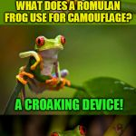 Star Trek Week...Nov. 20th - 27th...A brandy_jackson, Tombstone 1881, & coollew event! | WHAT DOES A ROMULAN FROG USE FOR CAMOUFLAGE? A CROAKING DEVICE! | image tagged in frog puns,star trek week,star trek,romulan,jokes,cloaking device | made w/ Imgflip meme maker