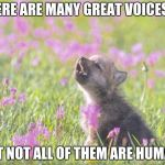 Baby Insanity Wolf Meme | THERE ARE MANY GREAT VOICES BUT NOT ALL OF THEM ARE HUMAN. | image tagged in memes,baby insanity wolf | made w/ Imgflip meme maker