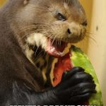 Self Loathing Otter Meme | WHEN YOU EAT YOUR MENTAL BREAKDOWN AWAY | image tagged in memes,self loathing otter | made w/ Imgflip meme maker