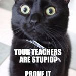 Woah Kitty Meme | YOUR TEACHERS ARE STUPID? PROVE IT | image tagged in memes,woah kitty | made w/ Imgflip meme maker