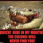 The Helpful Gator | THE COLONEL WILL NEVER FIND YOU! QUICK!  HIDE IN MY MOUTH! | image tagged in gator eating chicken,vince vance,alligator,chicken,chicken in aliigator's mouth,animal memes | made w/ Imgflip meme maker