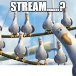 Finding Nemo Seagulls | STREAM......? | image tagged in finding nemo seagulls | made w/ Imgflip meme maker