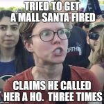Triggered feminist | TRIED TO GET A MALL SANTA FIRED CLAIMS HE CALLED HER A HO.  THREE TIMES | image tagged in triggered feminist | made w/ Imgflip meme maker