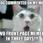 OMG Cat Meme | RAYDOG COMMENTED ON MY MEME!!! TWO FRONT PAGE MEMERS IN THREE DAYS!!! | image tagged in memes,omg cat,omg,raydog,thanks,milestone | made w/ Imgflip meme maker