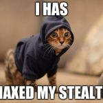Sneaking around in unturned | I HAS MAXED MY STEALTH | image tagged in memes,hoody cat,unturned | made w/ Imgflip meme maker