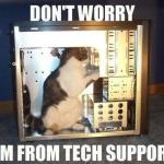 RayCat in Technical Support  meme