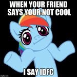 Pony Shrugs Meme | WHEN YOUR FRIEND SAYS YOUR NOT COOL I SAY IDFC | image tagged in memes,pony shrugs | made w/ Imgflip meme maker