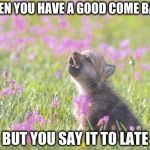 Baby Insanity Wolf Meme | WHEN YOU HAVE A GOOD COME BACK BUT YOU SAY IT TO LATE | image tagged in memes,baby insanity wolf | made w/ Imgflip meme maker