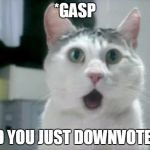 OMG Cat Meme | *GASP DID YOU JUST DOWNVOTED? | image tagged in memes,omg cat | made w/ Imgflip meme maker