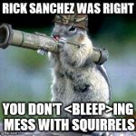 Bazooka Squirrel Meme | RICK SANCHEZ WAS RIGHT YOU DON'T <BLEEP>ING MESS WITH SQUIRRELS | image tagged in memes,bazooka squirrel | made w/ Imgflip meme maker