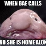 Blobfish | WHEN BAE CALLS AND SHE IS HOME ALONE | image tagged in blobfish | made w/ Imgflip meme maker