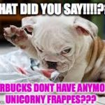 Question Puppy | WHAT DID YOU SAY!!!!??? STARBUCKS DONT HAVE ANYMORE UNICORNY FRAPPES??? | image tagged in question puppy | made w/ Imgflip meme maker