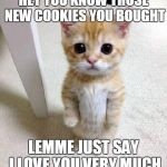 I ate your cookies... | HEY YOU KNOW THOSE NEW COOKIES YOU BOUGHT LEMME JUST SAY I LOVE YOU VERY MUCH | image tagged in memes,cute cat,cat,cookies | made w/ Imgflip meme maker