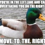 Actual Advice Mallard Meme | IF YOU'RE IN THE LEFT LANE AND CARS ARE OVERTAKING YOU ON THE RIGHT LANE MOVE. TO. THE. RIGHT | image tagged in memes,actual advice mallard,AdviceAnimals | made w/ Imgflip meme maker