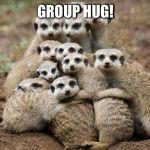 Animals Hugging | GROUP HUG! | image tagged in animals hugging | made w/ Imgflip meme maker