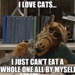 Alf eating cat | I LOVE CATS... I JUST CAN'T EAT A WHOLE ONE ALL BY MYSELF | image tagged in alf eating cat | made w/ Imgflip meme maker