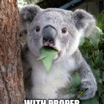 Surprised Koala Meme | I JUST READ A MEME WITH PROPER GRAMMAR | image tagged in memes,surprised koala | made w/ Imgflip meme maker