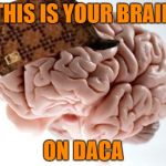 Scumbag Brain Meme | THIS IS YOUR BRAIN ON DACA | image tagged in memes,scumbag brain | made w/ Imgflip meme maker