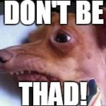 lisp dog | DON'T BE THAD! | image tagged in lisp dog | made w/ Imgflip meme maker