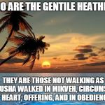 Palm trees, sunset | WHO ARE THE GENTILE HEATHENS THEY ARE THOSE NOT WALKING AS YAHUSHA WALKED IN MIKVEH, CIRCUMSION OF HEART, OFFERING, AND IN OBEDIENCE | image tagged in palm trees sunset | made w/ Imgflip meme maker
