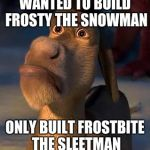 sad donkey | WANTED TO BUILD FROSTY THE SNOWMAN ONLY BUILT FROSTBITE THE SLEETMAN | image tagged in sad donkey | made w/ Imgflip meme maker