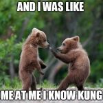 self defence bear | AND I WAS LIKE COME AT ME I KNOW KUNG FU | image tagged in self defence bear | made w/ Imgflip meme maker