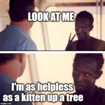 Misty | LOOK AT ME I'm as helpless as a kitten up a tree | image tagged in memes,captain phillips - i'm the captain now | made w/ Imgflip meme maker