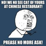 Y U No Meme | NO! WE NO SEE CAT OF YOURS AT CHINESE RESTAURANT! PREASE NO MORE ASK! | image tagged in memes,y u no,chinese food,cat | made w/ Imgflip meme maker