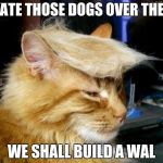 donald trump cat | I HATE THOSE DOGS OVER THERE WE SHALL BUILD A WAL | image tagged in donald trump cat | made w/ Imgflip meme maker