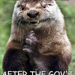 Evil Otter Meme | HOW CHUCKY SCHUMER MUST HAVE LOOKED AFTER THE GOV'T SHUTDOWN | image tagged in memes,evil otter | made w/ Imgflip meme maker