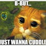 Shrek Cat Meme | B-BUT... I JUST WANNA CUDDLE... | image tagged in memes,shrek cat | made w/ Imgflip meme maker