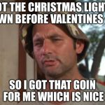 So I Got That Goin For Me Which Is Nice Meme | GOT THE CHRISTMAS LIGHTS DOWN BEFORE VALENTINES DAY SO I GOT THAT GOIN FOR ME WHICH IS NICE | image tagged in memes,so i got that goin for me which is nice | made w/ Imgflip meme maker