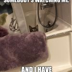 Watching | I ALWAYS FEEL LIKE SOMEBODY'S WATCHING ME. AND I HAVE NO PRIVACY. | image tagged in watching | made w/ Imgflip meme maker