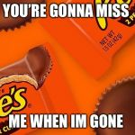 Reese's Cup | YOU'RE GONNA MISS ME WHEN IM GONE | image tagged in reese's cup | made w/ Imgflip meme maker