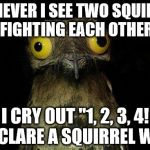 "Weird Stuff I Do Potoo Meme | WHENEVER I SEE TWO SQUIRRELS FIGHTING EACH OTHER I CRY OUT ""1, 2, 3, 4!  I DECLARE A SQUIRREL WAR!"" 