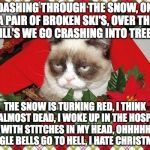 good thing Christmas is over!!! | DASHING THROUGH THE SNOW, ON A PAIR OF BROKEN SKI'S, OVER THE HILL'S WE GO CRASHING INTO TREE'S THE SNOW IS TURNING RED, I THINK I'M ALMOST  | image tagged in memes,grumpy cat mistletoe,grumpy cat | made w/ Imgflip meme maker
