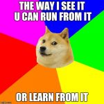 Advice Doge Meme | THE WAY I SEE IT U CAN RUN FROM IT OR LEARN FROM IT | image tagged in memes,advice doge | made w/ Imgflip meme maker