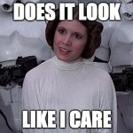 Princess Leia | DOES IT LOOK LIKE I CARE | image tagged in princess leia | made w/ Imgflip meme maker