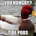 Malicious Advice Mallard Meme | YOU HUNGRY? TIDE PODS | image tagged in memes,malicious advice mallard | made w/ Imgflip meme maker