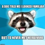 Bad pun week | A DOE TOLD ME I LOOKED FAMILIAR BUT I'D NEVER MET HERBIVORE | image tagged in memes,lame pun coon,bad pun,dad joke,funny | made w/ Imgflip meme maker