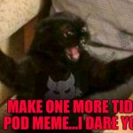 Even an anti tide pod meme is still a tide pod meme... | MAKE ONE MORE TIDE POD MEME...I DARE YOU | image tagged in cat with guns,memes,tide pods,funny,getting old,irony | made w/ Imgflip meme maker