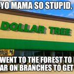 Dollar Tree | YO MAMA SO STUPID, SHE WENT TO THE FOREST TO FIND DOLLAR ON BRANCHES TO GET RICH | image tagged in dollar tree | made w/ Imgflip meme maker