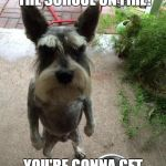 Angry dog | HOW DARE YOU SET THE SCHOOL ON FIRE! YOU'RE GONNA GET ARRESTED FOR THAT! | image tagged in angry dog | made w/ Imgflip meme maker