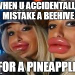 Duck Face Chicks Meme | WHEN U ACCIDENTALLY MISTAKE A BEEHIVE FOR A PINEAPPLE | image tagged in memes,duck face chicks | made w/ Imgflip meme maker
