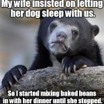 Confession Bear cracks one off. | My wife insisted on letting her dog sleep with us. So I started mixing baked beans in with her dinner until she stopped. | image tagged in memes,confession bear | made w/ Imgflip meme maker
