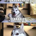 Bad Pun Dog Meme | WHAT DO YOU CALL PUNS ON PAPER TEARABLE! | image tagged in memes,bad pun dog | made w/ Imgflip meme maker