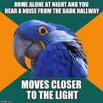 Definitely never happened | HOME ALONE AT NIGHT AND YOU HEAR A NOISE FROM THE DARK HALLWAY MOVES CLOSER TO THE LIGHT | image tagged in memes,paranoid parrot | made w/ Imgflip meme maker