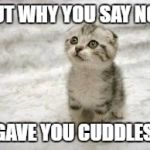 Sad Cat Meme | BUT WHY YOU SAY NO? I GAVE YOU CUDDLES... | image tagged in memes,sad cat | made w/ Imgflip meme maker
